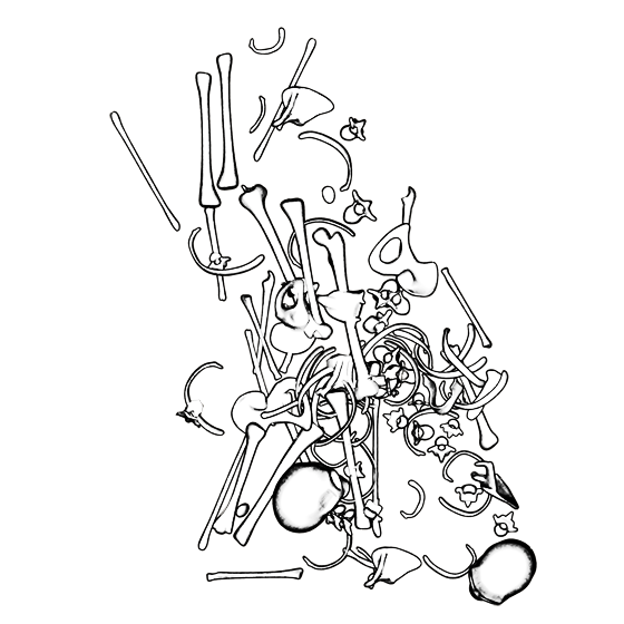 bonefield_005