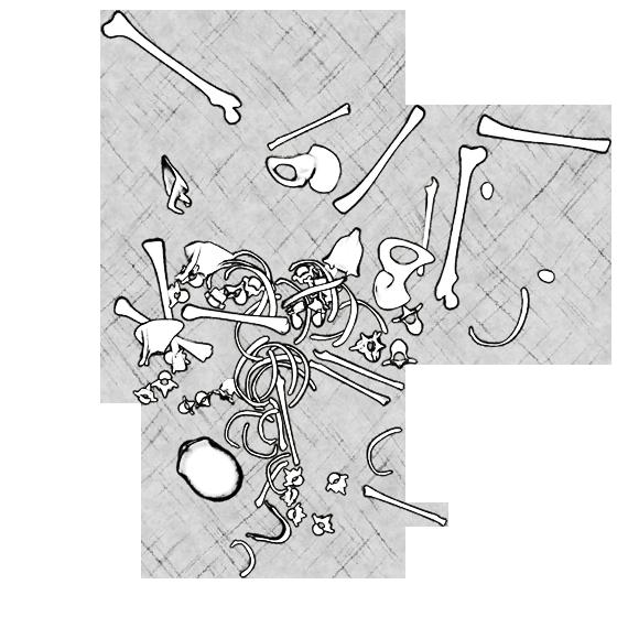 bonefield_008