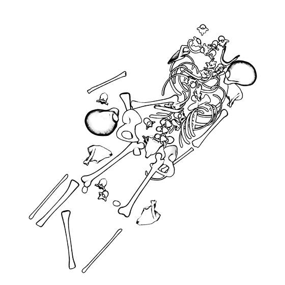 bonefield_009